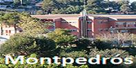 Institut Montpedrós